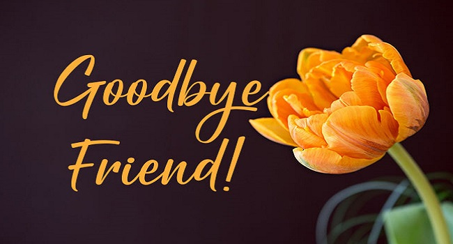 Goodbye-Friend